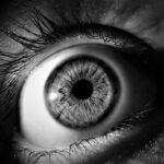 Educación visual para aprender a mirar bien