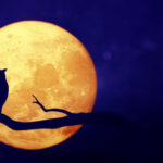 Luna de Maíz, tiempo de cosecha
