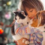 Tenencia responsable y sanitaria de perros y gatos