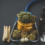 En Entre Ríos garantiza el uso de cannabis con fines terapéuticos